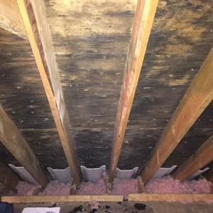 Myth or truth moisture and radiant barrier atticfoil radiant mold and mildew probably the two scariest words to associate with your attic to be proactive toward these potential problems its important to keep your solutioingenieria Images