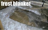 Frost Blanket